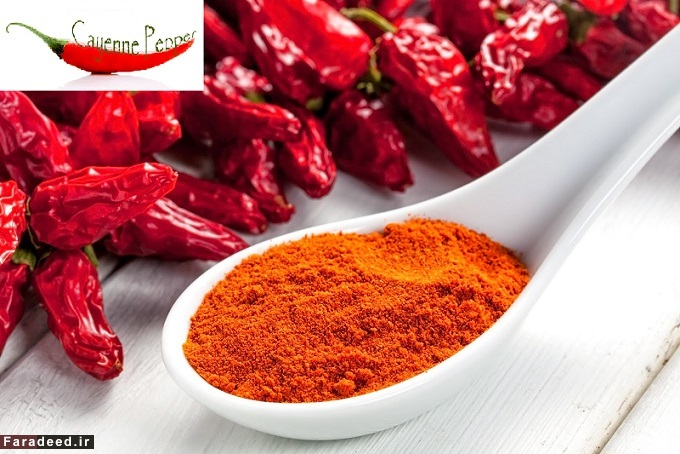 فلفل کاین Cayenne Pepper